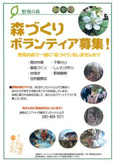 野鳥の森:森づくりボランティア募集